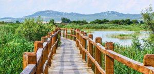 Nature Park Vrana Lake excursion from Zadar