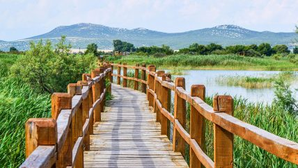 Nature Park Vrana Lake excursion from Zadar